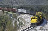 Grande Cache and Dawson Creek Subs