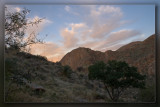 Sabino Canyon Sunrise 03
