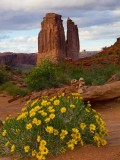 Arches NP -- Courthouse Tower in the Spring