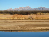 View from park across Rio Grande to Organ Mountains