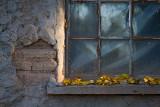 Abandoned adobe house