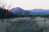 Picacho Peak from Mesilla Bosque