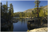 South Fork of the San Joaquin River California