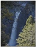 Yosemite National Park  2006