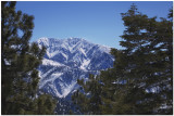 Sheep Creek Wilderness California