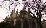 Notre-Dame 6