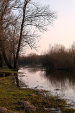 Backwater of Bug River