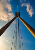 The Foot-bridge