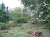 Sept 2008 Windstorm