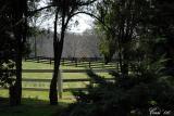 Side Pasture