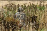 DSC_1073p.The hunter