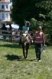 Pony Rides.