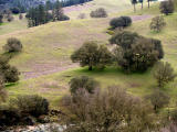 Cronan Ranch Park