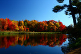 Autumn ColorsOctober 10, 2008