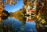 Autumn ColorsOctober 15, 2008