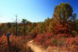 Hiking TrailOctober 23, 2008