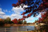 Autumn ColorsOctober 30, 2008