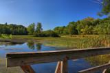 Pond Reflection in HDRSeptember 4, 2009