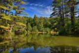 Pond Reflection in HDRSeptember 14, 2009