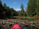 Kayak Dead EndSeptember 19, 2009