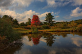 Autumn Scene in HDROctober 3, 2009