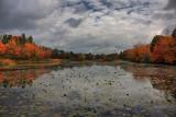 Autumn Scene in HDROctober 13, 2009