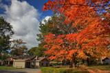 Park Autumn Scene in HDROctober 14, 2009