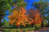 Autumn Landscape in HDROctober 13, 2010