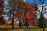 Autumn Colors in HDR November 1, 2010