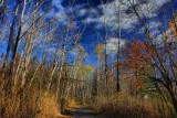 Autumn Scene in HDR November 7, 2010
