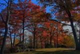 Autumn Scene in HDR November 10, 2010