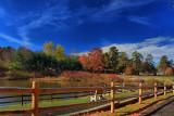 Autumn Scene in HDRNovember 10, 2010