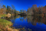 Landscape of Pond in HDR November 11, 2010