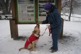 Giving the Dog a TreatDecember 23, 2010