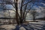 Winter Scene in HDRJanuary 20, 2011
