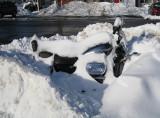 Snowy HarleyJanuary 21, 2011