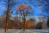 Winter Landscape in HDRJanuary 29, 2011