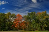 Autumn Scene in HDRSeptember 19, 2012