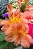 FlowersOctober 4, 2012