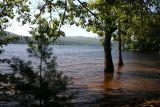 July 16, 2006At the Lake