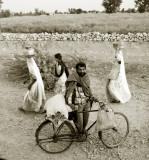 L'HOMME A LA BICYCLETTE