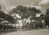 Rome0176460405A.jpg