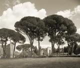 Rome0176440405aR.jpg