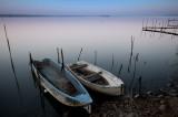Trasimeno lake 2012