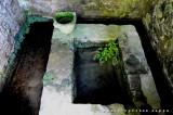 il giardino segreto - particolare