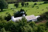 Bwthyn  - Mynydd Bodafon.