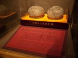 Dinosaur Eggs from China0599