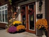 4741.Entry Flowers