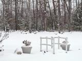 7107.SnowBridge