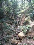 Hike on HK Island